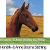Hendrik- & Anne Bosma Stichting logo