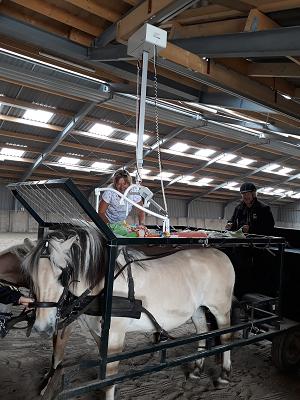 Huifbed met tillift en paarden - Stichting Hart in Friesland